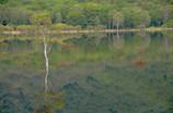 幻の湖出現