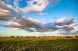 稲刈り後の夕景