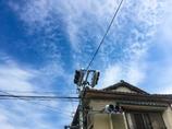 信号機と空