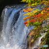 滝と紅葉と