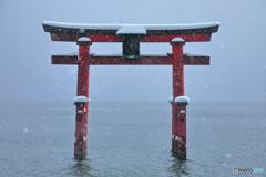 冬の白髭神社