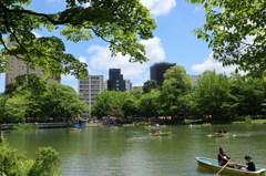 札幌散歩65 中島公園の池