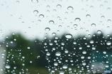 本格的な雨