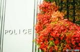 交番の壁が秋♪
