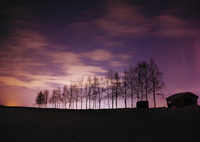 PENTAX PENTAX K-7で撮影した(極夜)の写真(画像)