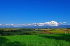美瑛の丘と十勝岳連峰