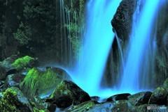 苔と悠久の清流~吐竜の滝~