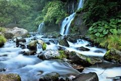 夏の吐竜の滝~吐竜の滝~
