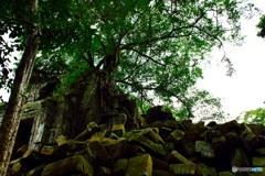 カンボジア_18