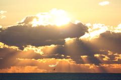 明日また陽が昇るなら