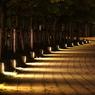 夜のPromenade