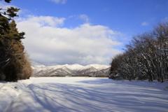 雪キャンパスに影