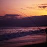 湘南海岸の釣り少年