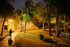 台湾 夜の公園にて