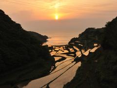 棚田の夕陽