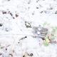 春を待つ 富士フィルムXpro1