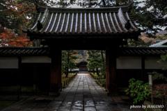 三渓園 御門