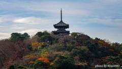 三渓園 旧燈明寺三重塔