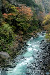 秋づく荒川