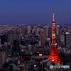 Symbol of Tokyo
