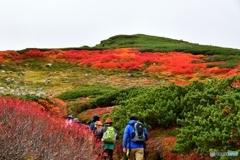 日本で最も早い紅葉 №20 北の国から