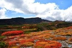 日本で最も早い紅葉 №18 北の国から