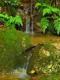 鶏鳴の滝 笹ヶ岳の名園