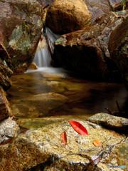 楊梅の滝 雌滝直下で