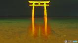 白髭神社の鳥居deボディランゲージ