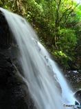 鶏鳴の滝 ベーシックな横顔