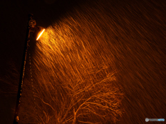 雪か、線香花火か