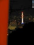 夜稲荷~タワーハンター現る