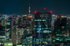 Tokyo's cityscapes 5