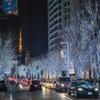 Tokyo's cityscape4