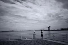 横浜港を望む