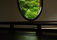 NIKON NIKON D600で撮影した(源光庵4 悟りの窓の床みどり)の写真(画像)