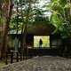 法然院1 木漏れ日の山門