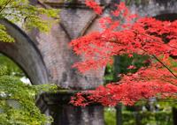 NIKON NIKON D600で撮影した(南禅寺 水路閣)の写真(画像)