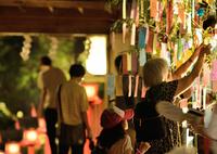 NIKON NIKON D600で撮影した(貴船神社1 七夕笹飾りライトアップ)の写真(画像)