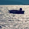湖畔に漂う