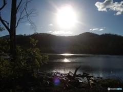 北方からの光 (オーストラリアの森中の池 1)