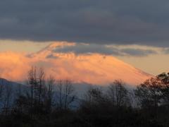 P1130078 12月15日 今朝の富士山