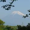 P1090170 緑と富士山