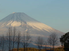 P1060904 1月15日 今朝の富士山