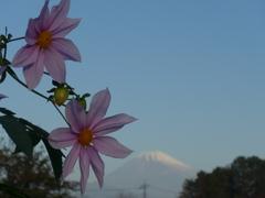 P1120825 (2) 富士山と