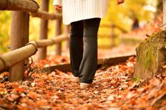 秋の小道を散策