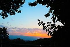 高台から望む夕日