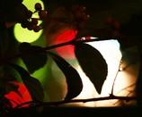 ひさかたの乳色なせる大き輪の中にかがやく秋の夜の月