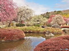 早春の万葉庭園♪2