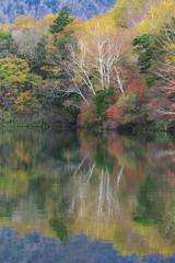 日光・湯ノ湖の秋♪3